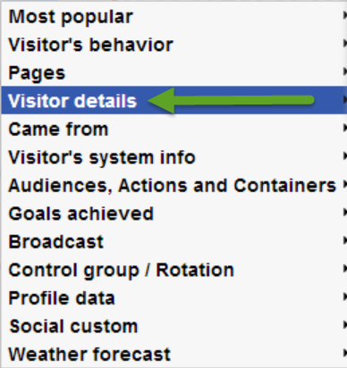 "Place Your Mouse Cursor over the ""Visitor Details"" Segmentation Categoru"